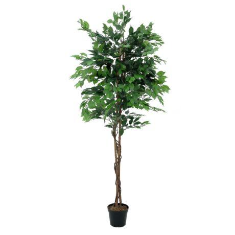 Fikusz fa többszárú 1488 leveles műnövény 180cm