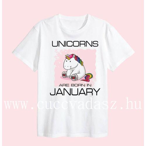 Unicorn are born in..